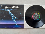 GREAT WHITE SHOT IN THE DARK ( CAPITOL 1C064-240613 1 A1/B1 ) 1986 GER