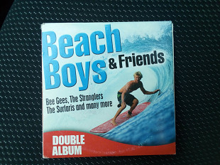 Beach Boys & friends - double album 2CD