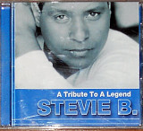 Stevie B ‎– A tribute to a legend (2003)(Soul, Funk, Freestyle)