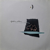 Peter Cetera - One More Story. Werner Bros. rec. 1988 (Germany)