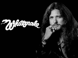 14xCD _ David Coverdale & Whitesnake