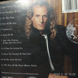Michael Bolton. The One Thing .