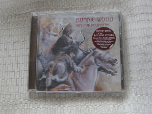 RONNIE WOOD / not for beginners / 2001