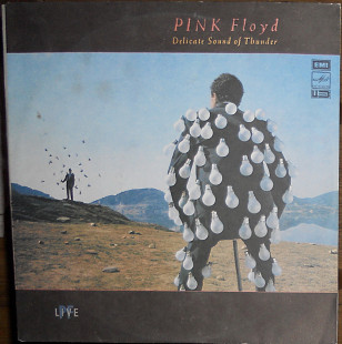 Pink Floyd ‎– Delicate Sound Of Thunder (2LP)